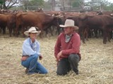 Anita and Sean Barrett preparing cattle for Baz Luhrmann's movie Australia (photo by; Garlon Moulin)