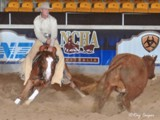 Bloodwood Artistic Cat, Futurity 2008, photo by Ray Cooper.